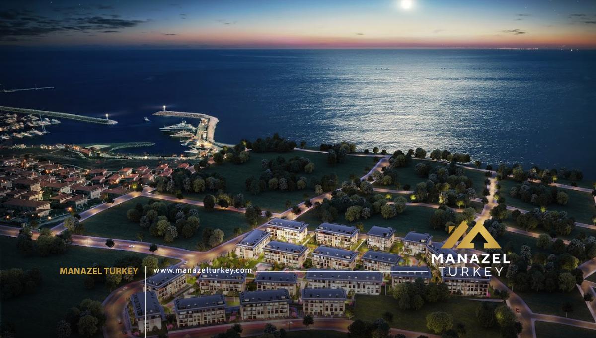 Palm Marin (7)